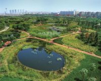 UFO_Water_p41_Qiaoyuan_Wetland_Park_China